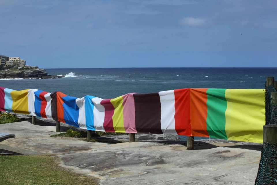 Banner-Bondi-closeup-w-ocean-low-res